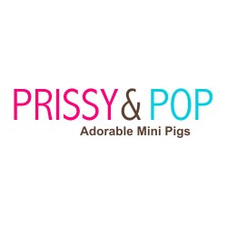 Prissy And Pop
